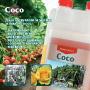 Coco opuscolo