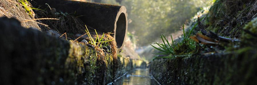 Sistemi idroponici a perdita (run-to-waste): concetti di base