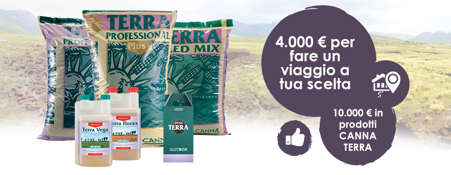 Campaign: CANNA TERRA Shops 2021